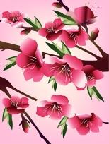 Vector cherry blossom