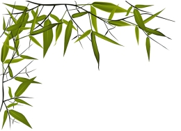 vector bamboo leaves