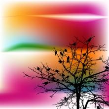 tree with bird
